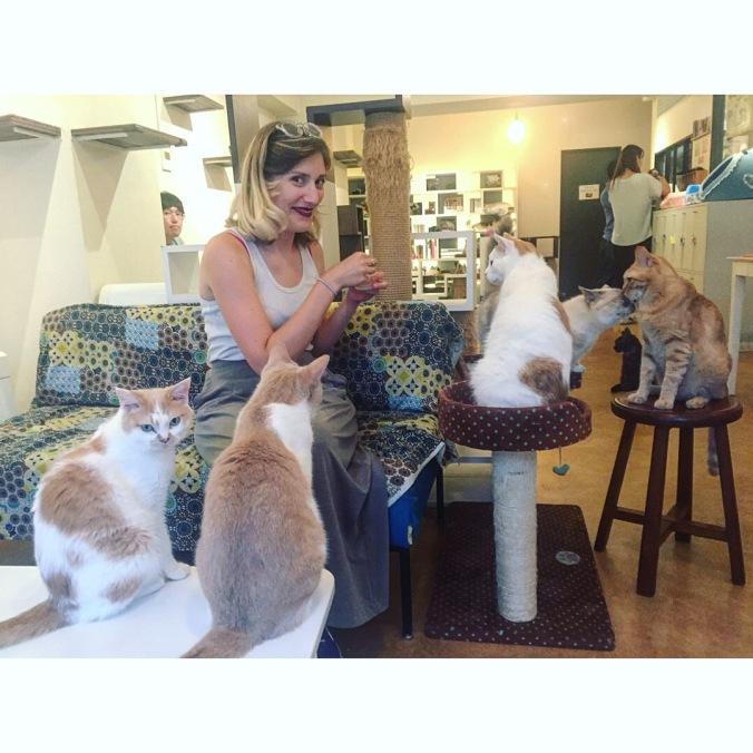 catcafe-lostness-co-uk